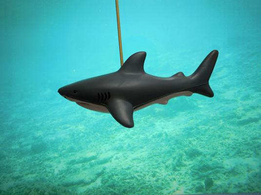 サメのおもちゃの写真